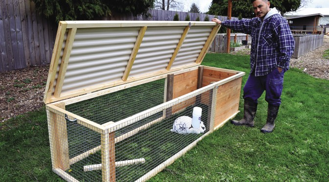 Build a rabbit hutch and tractor for Easy diy rabbit cage budget