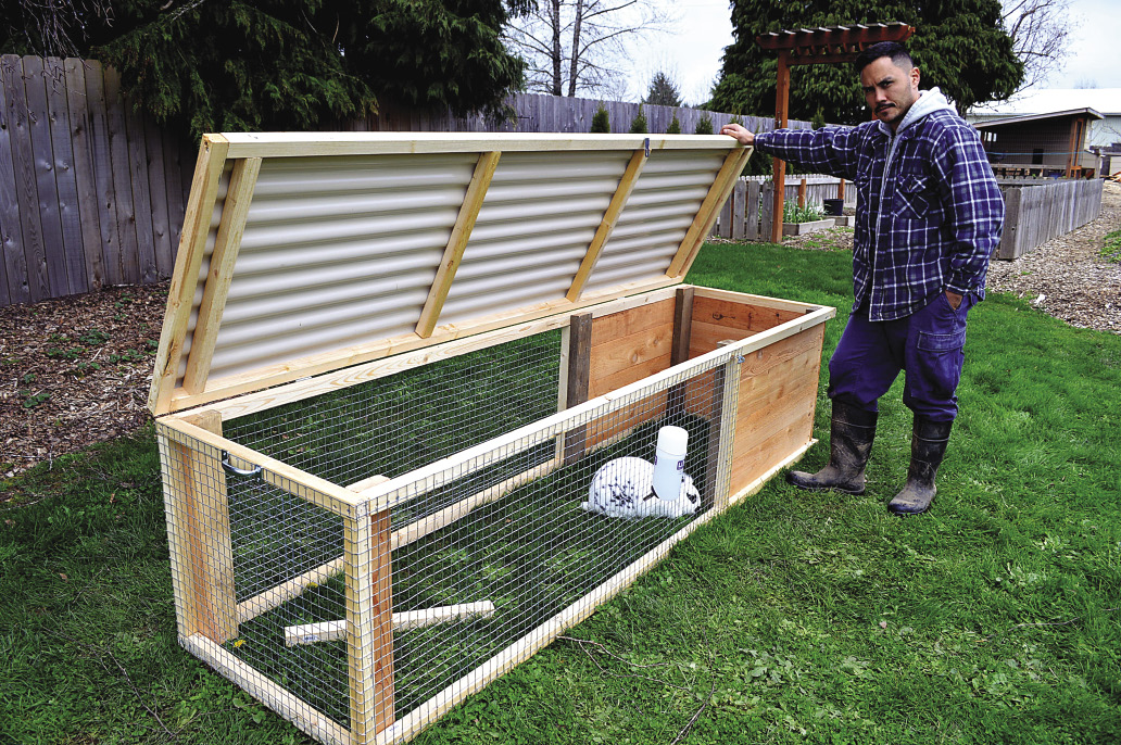 Rabbit Tractor Designs : Build a rabbit hutch and tractor