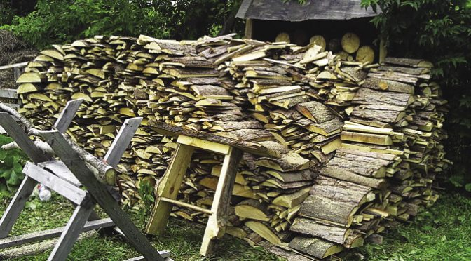 Try harvesting smaller diameter firewood with a bow saw and sawbuck
