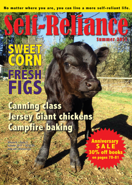 Cover_summer_17