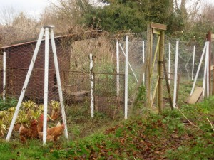High fencing with dug in bottom