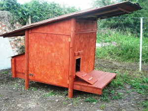Our chicken house made using reused materials